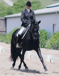 Moon_Valley_dressage